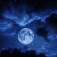 Once in a blue moon (saying how often we do things)